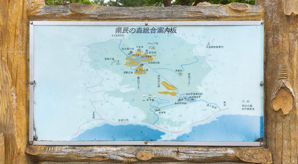 沖縄県民の森・北部・恩納村[沖縄キャンプ場]