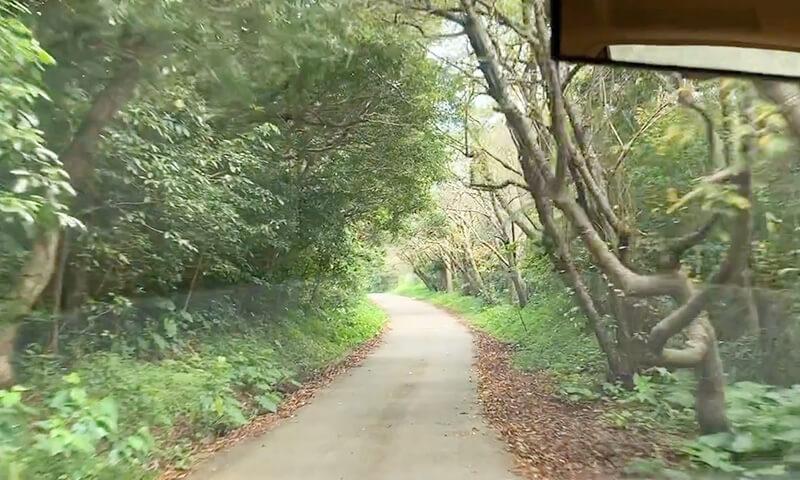 乙羽岳森林公園はどんなキャンプ場?